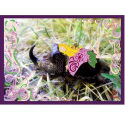 Orrszarvúbogár fotó tündérrel szép rajzzal Fodorinda módra